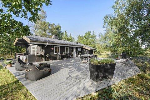Ferienhaus 53859