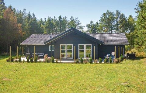 Ferienhaus 49078