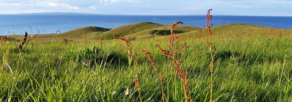 Blick über die Landschaft der dänischen Insel Samsø