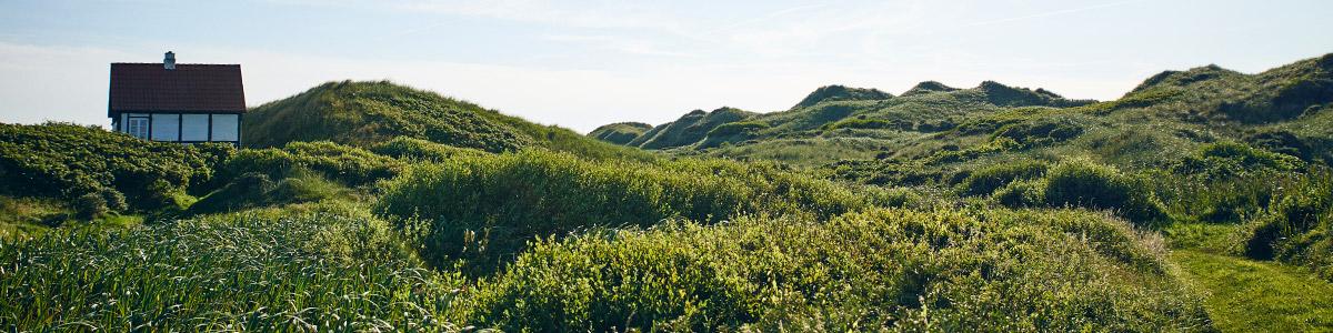 Blokhus – Saltum – Hune (27 Km)