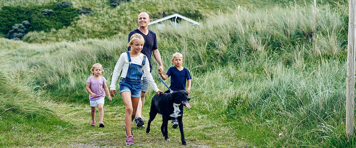 Mit dem Hund an die Ostsee in Dänemark